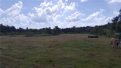 Saint Cloud, St Cloud, St. Cloud, St.cloud Residential Lots & Land For Sale: 3980 Doe Drive