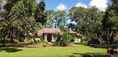 Clermont Single Family Home For Sale: 11431 Nellie Oaks Bend