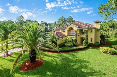 Orlando Single Family Home For Sale: 10240 Trout Road
