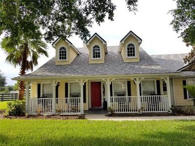 Mount Dora Single Family Home For Sale: 7817 Laurel View Drive