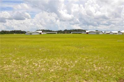 Groveland Residential Lots & Land For Sale: Grass Roots Road #Lot 12