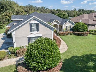Windermere Single Family Home For Sale: 10225 Birch Tree Lane