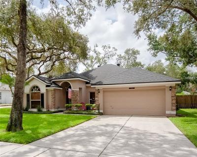 Sanford Single Family Home For Sale: 5101 Blacknell Lane