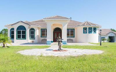 Volusia County Single Family Home For Sale: 383 Equestrians Way