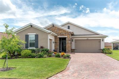 Clermont, Davenport, Haines City, Winter Haven, Kissimmee, Poinciana Single Family Home For Sale: 393 Treviso Drive
