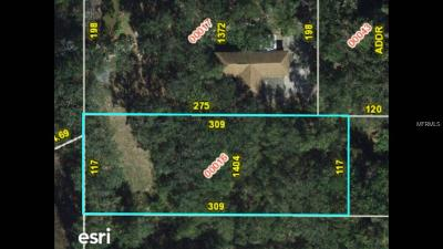 Winter Garden Residential Lots & Land For Sale: 1404 Avalon Road