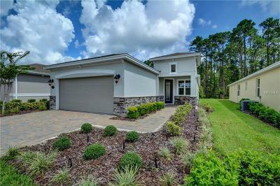 Deland Single Family Home For Sale: 1293 Hayton Avenue