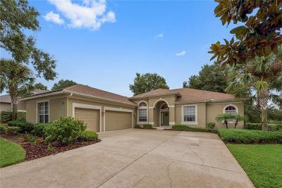 Clermont Single Family Home For Sale: 4048 Greystone Drive