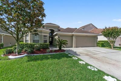 Hillsborough County, Pasco County, Pinellas County Single Family Home For Sale: 23636 Estero Court