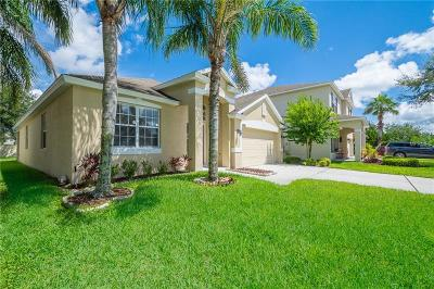 Orlando Single Family Home For Sale: 9712 Heron Pointe Drive