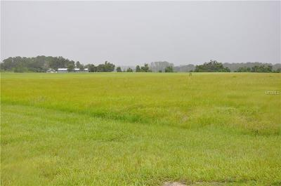 Groveland Residential Lots & Land For Sale: Grass Roots Grass Roots Road #LOT17