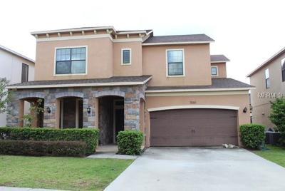 Minneola Single Family Home For Sale: 1060 Thunderhead Lane
