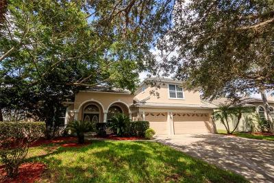 Orlando Single Family Home For Sale: 14815 Oldham Drive
