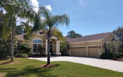 New Port Richey Single Family Home For Sale: 1706 Nodding Thistle Drive