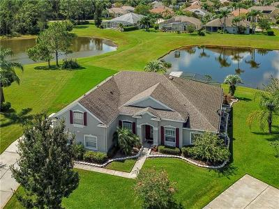 Orlando Single Family Home For Sale: 702 Divine Circle