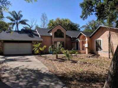 Orlando Single Family Home For Sale: 4120 S Chickasaw Trail