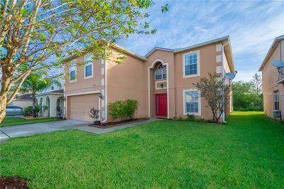 Saint Cloud Single Family Home For Sale: 4651 Salamander Street