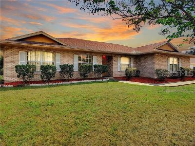 Volusia County Single Family Home For Sale: 1811 N Akron Drive