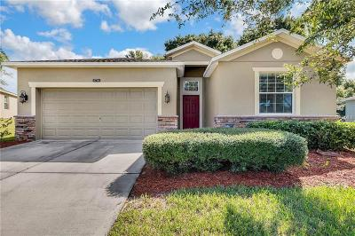 Mount Dora Single Family Home For Sale: 5714 Rutherford Road