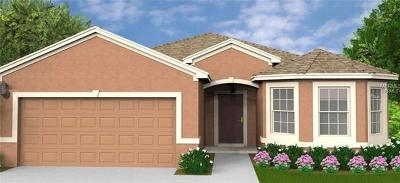 Lake County, Orange County, Osceola County, Polk County, Seminole County Single Family Home For Sale: 1849 Van Gogh Drive