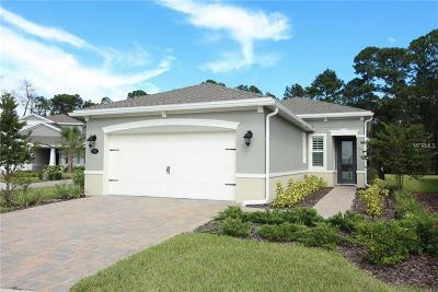 Deland Single Family Home For Sale: 1285 Eggleston Drive