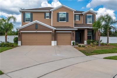 Deltona Single Family Home For Sale: 1361 Lake Baton Drive