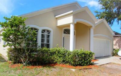 Apollo Beach Single Family Home For Sale: 6808 Monarch Park Drive
