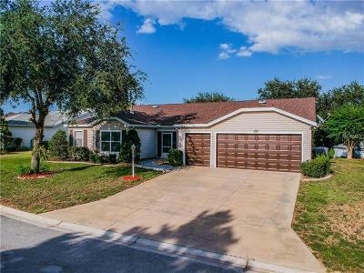 Leesburg Single Family Home For Sale: 4949 Sawgrass Lake Circle