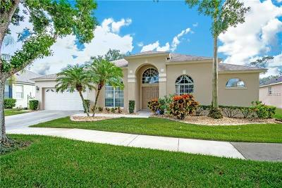 Orlando Single Family Home For Sale: 6801 Scythe Avenue