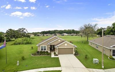 Hudson Single Family Home For Sale: 13329 Niti Drive