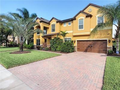 Winter Garden Single Family Home For Sale: 15220 Firelight Drive