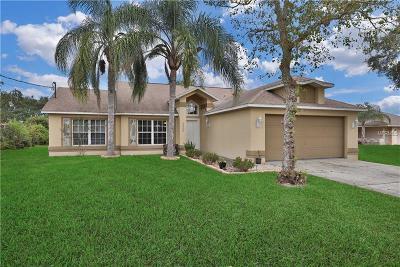 Deltona Single Family Home For Sale: 2585 Courtland Boulevard