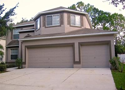 Hernando County, Hillsborough County, Pasco County, Pinellas County Single Family Home For Sale: 10915 Summerton Drive