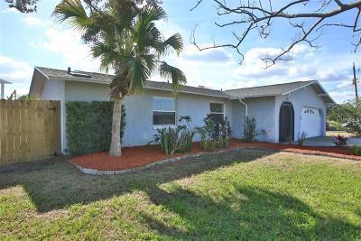 Ormond Beach Single Family Home For Sale: 1022 Shockney Drive