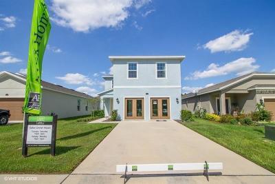 Fruitland Park Single Family Home For Sale: 1101 Atlantic Avenue