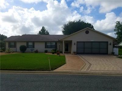 Leesburg Single Family Home For Sale: 26523 Evert Street