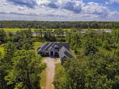 Orlando Single Family Home For Sale: 18450 Starry Street