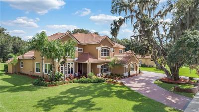 Sanford Single Family Home For Sale: 177 Osprey Hammock Trail