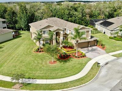 Orlando Single Family Home For Sale: 6326 Brenton Pointe Cove