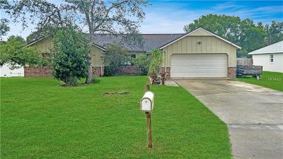 Deltona Single Family Home For Sale: 1972 Algonquin Avenue