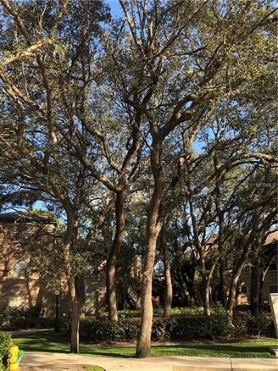 Lake County, Seminole County, Volusia County Rental For Rent: 486 N Pin Oak Place #310