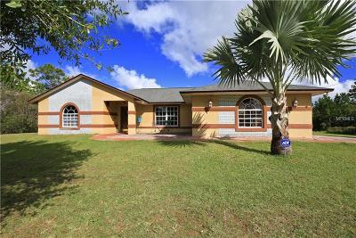 Orlando Single Family Home For Sale: 20925 Ortega Street