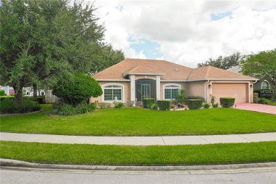Debary Single Family Home For Sale: 265 Palmetto Springs Street