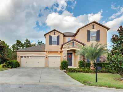 Mount Dora Single Family Home For Sale: 30142 Kladruby Point