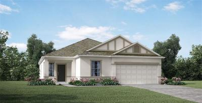 Punta Gorda Single Family Home For Sale: 25901 Aysen Drive