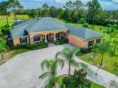 Kissimmee Single Family Home For Sale: 2937 Tindall Acres Road
