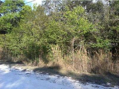 Inverness Residential Lots & Land For Sale: 3434 E Theo Lane
