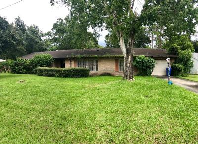 Riverview Single Family Home For Sale: 7416 Krycul Avenue