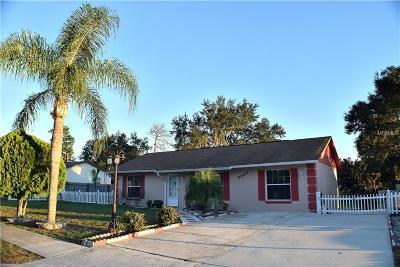 Deltona Single Family Home For Sale: 3005 Hunkin Circle
