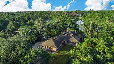 Deltona Single Family Home For Sale: 1938 S Lehigh Drive